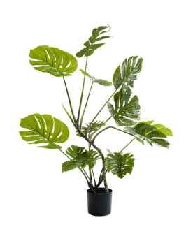 Декоративное растение Monstera 110cm