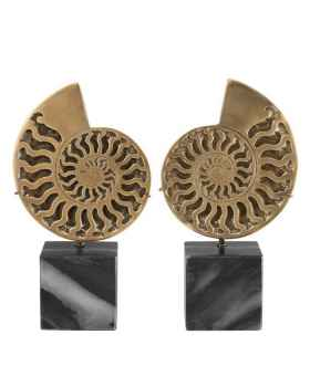 Деко объект Ammonite set of 2