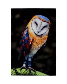 Картина на стекле Cute Owl 120x80cm
