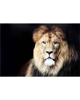 Картина на стекле King of Lion 150x100