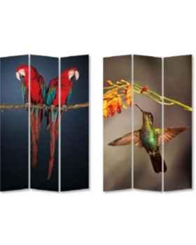 Ширма Twin Parrot vs Cute Colibri 120x180cm