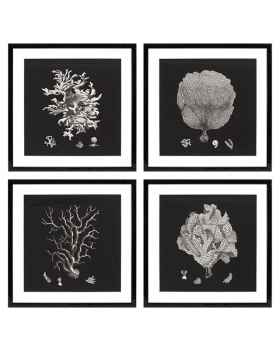 Картина Black & White Collection II set of 4