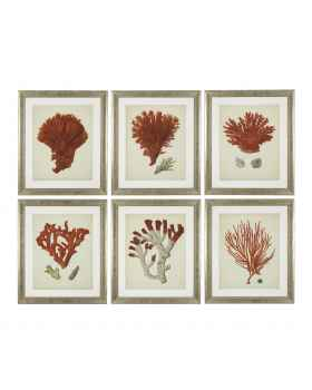 Картина Antique red corals set of 6
