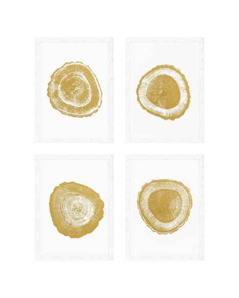 Картина Tree Rings set of 4